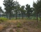 上饶铅山县3000亩有林地(120 元/亩/年)