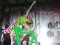 惠东菲士舞蹈,可以分期付款的培训机构