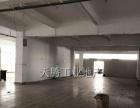 伦教首层水泥结构500方仓库出租,高4.3米