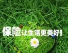 常青树2016 保障全 保费低!
