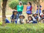 长沙幼儿园秋游户外亲子活动(长沙周边市区都可选择)