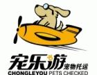 宠乐游-始发南宁至全国各地宠物托运服务全国24个城市直属网点
