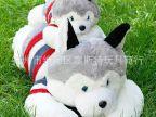 扬州厂家直供新品毛绒玩具狗公仔 哈士奇狗布娃娃礼物婚庆礼品