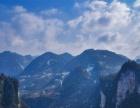 张家界森林公园 天门山 玻璃桥大峡谷4日游