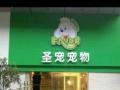 北京圣宠全国连锁店菏泽华英路店
