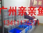 昆明大理官渡石林安宁五华亲亲鱼鱼疗鱼缸足疗鱼缸制造