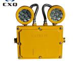 大量批发BXW6229节能防爆应急工作灯 海洋王BXW6229防