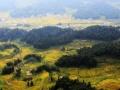 【紫鹊界&稻谷黄了】紫鹊界梯田+湄江地质公园2日游