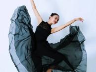 单色舞蹈舞蹈培训