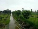 拉布拉多繁殖场花木场农庄转让