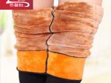 秋冬新品 加肥加大羊羔绒打底裤 黄金高腰大码单层一体保暖裤女
