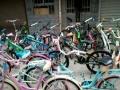 店面已转 所有自行车亏本转让