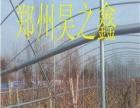 昊之鑫温室大棚建设公司诚求客户