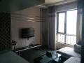 光谷BRT 金地中心城精装一室一厅出租 全新家电 拎包入住