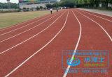 透气型塑胶跑道是南方地区最适合的跑道之一