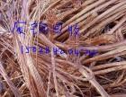 高价回收废铜铝电线电缆变压器等有色金属废料