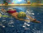 大连儿童德国游泳馆_贝贝鲸专业儿童游泳中心