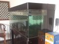 超白玻璃鱼缸宽200*高160*厚76cm低价处理送配件