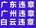 广东违章广州白云花都汽车年审 上牌 过户 迁出!