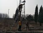 郭師傅專業修樹伐樹移樹