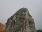秦岭石— 花纹石