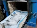 武汉精致小宠1对1专人宠物殡葬服务
