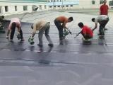 上海松江区九亭卫生间厨房防水 瓷砖铺贴