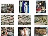 专业出口厂家全国各地高价回收旧衣对鞋皮包