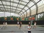 成人一对一,青少年网球周末班.暑假班.寒假班