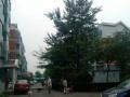 梨园附近 幸福时光 南北两居 中楼层采光好 环球影视旁边