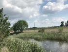 鱼池出租出售 土地 16000平米
