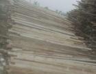 沈阳有大量工地木方 建筑模板出售