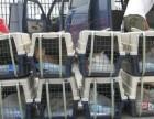 懿致货运是一家专门做宠物空运宠物托运宠物运输狗狗空运猫咪空运