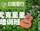 合肥学吉他 暑假学什么合肥吉他培训班尤克里里培训班多少钱