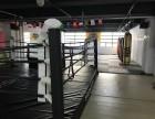 潍坊潍城区飓风泰拳搏击会馆散打拳击防身术体验免费