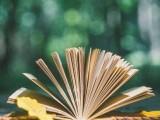 英語,個人1對1網授小學英語3年讀完