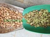 果园新能源植被绿肥长柔毛野豌豆种子快递全国