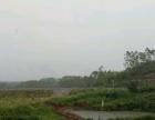 长泰 岩溪镇 渔业牧业养殖场出租承包