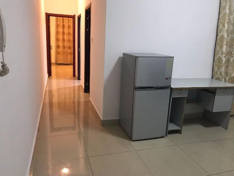 鸳鸯 叠彩城 1室 1厅 50平米 整租