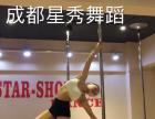 邛崃钢管舞教练培训 网红主播培训 星秀舞蹈