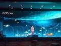齐齐哈尔百脑惠LED显示屏P5全彩现货批发