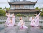 南湖成人舞蹈培训班哪家好多少钱 单色舞蹈 免费试课