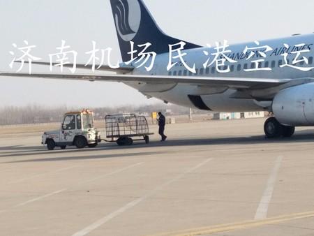 航空货运,航空快递,济南空运,济南航空货运,济南民港航空物流