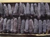 无锡高价回收冬虫夏草收购海参鱼肚燕窝鱼翅
