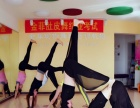 金菲东丽店瑜伽教练班招生中国际瑜伽指定地点零基础教学包证书