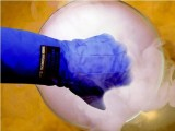 赛立特 超低温液氮防护手套 6005/实验室低温防寒手套