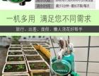 国庆旅游家中浇花不愁自动定时浇水器 自动浇花