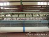 果园防护网 葡萄防鸟网 白色 质优价廉 厂家直销
