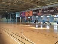 合肥极光少儿篮球冬季培训 明珠广场东海花园芙蓉路室内训练