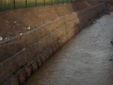 中石厂家供应镀高尔凡雷诺护垫 生态格网 固滨笼 用于护坡护岸